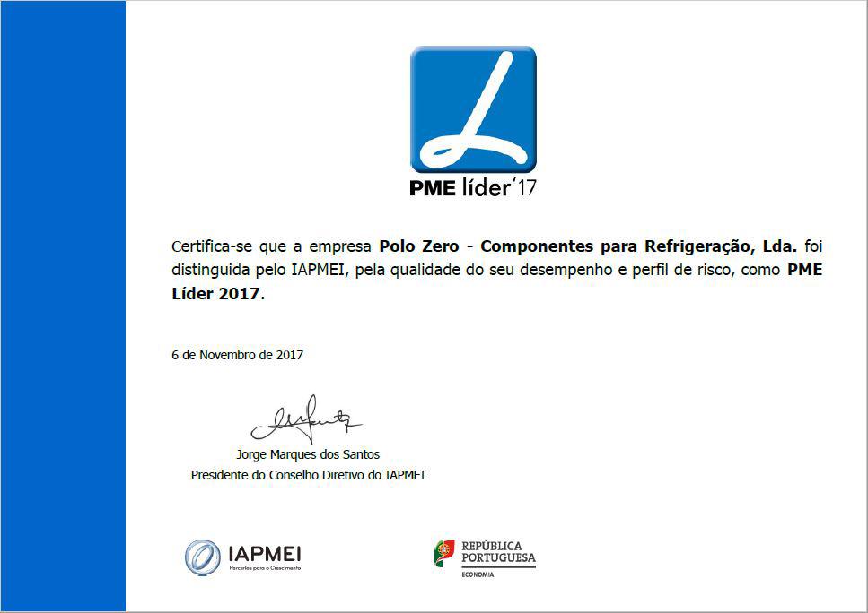 PME Lider 17(1)